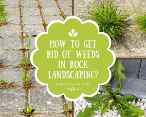 How To Get Rid Of Weeds In Rock Landscaping?