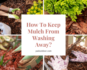 How To Keep Mulch From Washing Away?