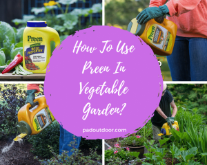 How To Use Preen In Vegetable Garden?
