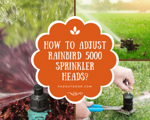 How To Adjust Rainbird 5000 Sprinkler Heads?