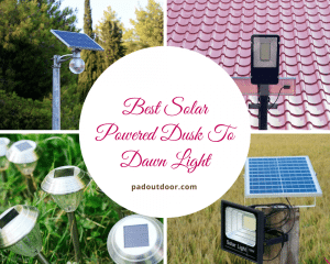 Best Solar Powered Dusk To Dawn Light