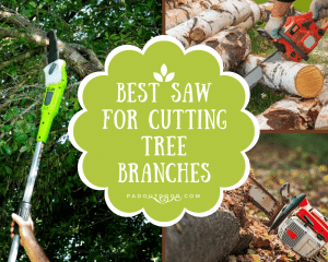 Best Saw For Cutting Tree Branches